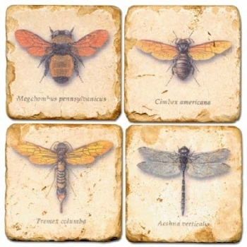 Marble Coasters, set of 4, illustration theme Winged Insects 1, antique finish, cork backed, l 10 x w 10 x h 1 cm