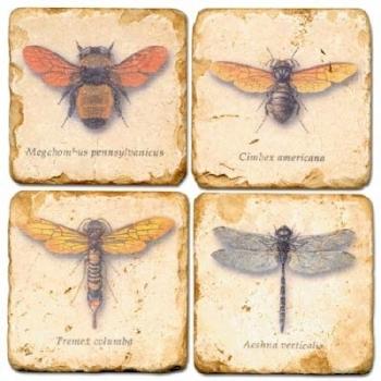 Sous-verres en marbre, 4 pièces, motif insectes 1, finition antique avec dos en liège, L 10 xl 10 x h 1 cm