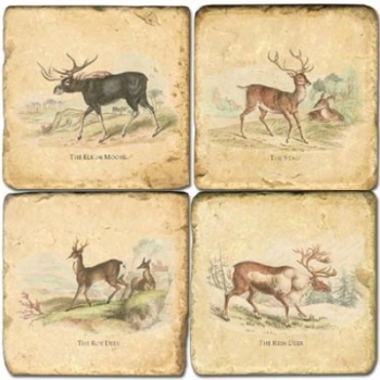 Marble Coasters, set of 4, illustration theme Deer, antique finish, cork backed, l 10 x w 10 x h 1 cm
