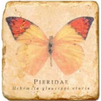Carrelage en marbre, motif papillon A, finition antique, illet pour l'accroche, pieds antidérapants, L 20 xl 20 x h 1 cm