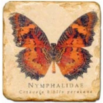Carrelage en marbre, motif papillon B, finition antique, illet pour l'accroche, pieds antidérapants, L 20 xl 20 x h 1 cm