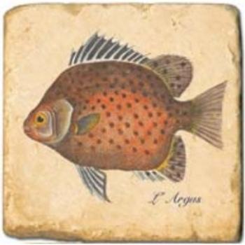 Carrelage en marbre, motif poissons exotiques A, finition antique, illet pour l'accroche, pieds antidérapants, L 20 xl 20 x h 1 cm