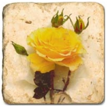 Marble Tile, Theme: Roses A, antique finish, hanger, anti slip nubs, Dim.: l 20 x w 20 x h 1 cm