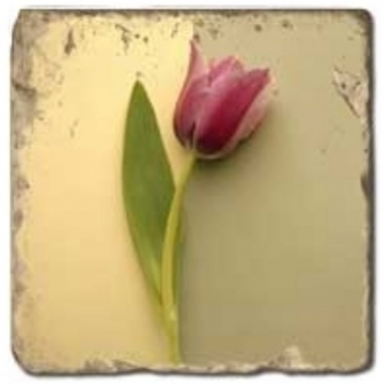 Marmorfliese, Motiv: Tulpen C,  Antikfinish,  Aufhängeöse, Antirutschfüßchen, Maße: L 20 x B 20 x H 1 cm
