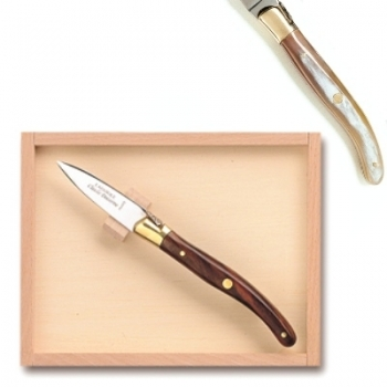 Laguiole oyster opener in box, l 16 cm, polished brass bolsters, horn light