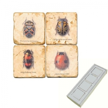 Marble Memo Magnets, set of 4, illustration theme Bugs, antique finish, l 5 x w 5 x h 1 cm
