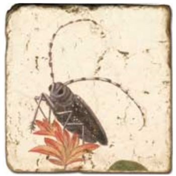 Marble Tile, Theme: Winged Insects 2 D, antique finish, hanger, anti slip nubs, Dim.: l 20 x w 20 x h 1 cm