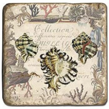 Carrelage en marbre, motif coquillages 1D, finition antique, illet pour l'accroche, pieds antidérapants, L 20 xl 20 x h 1 cm