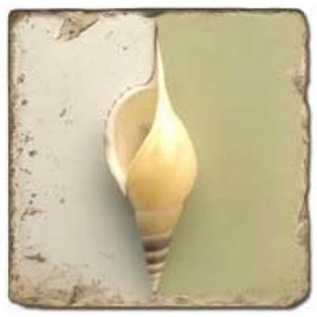 Carrelage en marbre, motif coquillage 2B, finition antique, illet pour l'accroche, pieds antidérapants, L 20 xl 20 x h 1 cm
