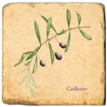 Marble Tile, Theme: Olive Branches A, antique finish, hanger, anti slip nubs, Dim.: l 20 x w 20 x h 1 cm