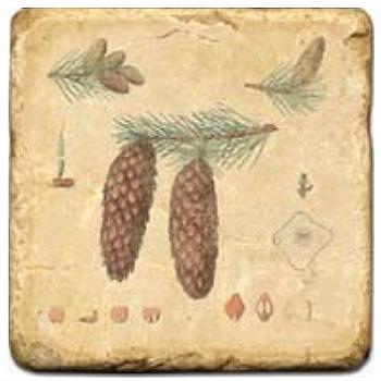 Carrelage en marbre, motif pommes de pin D, finition antique, illet pour l'accroche, pieds antidérapants, L 20 xl 20 x h 1 cm