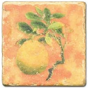 Marble Tile, Theme: Fruit Mix D, antique finish, hanger, anti slip nubs, Dim.: l 20 x w 20 x h 1 cm