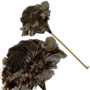 Plumeau en vraies plumes d'autruche, manche en bois vernis, lacet cuir, L 90 cm