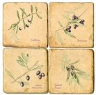 Marble Coasters, set of 4, illustration theme Olive Branches, antique finish, cork backed, l 10 x w 10 x h 1 cm