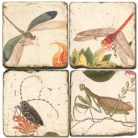 Sous-verres en marbre, 4 pièces, motif insectes 2, finition antique avec dos en liège, L 10 xl 10 x h 1 cm