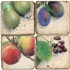 Marble Coasters, set of 4, illustration theme Fruit, antique finish, cork backed, l 10 x w 10 x h 1 cm