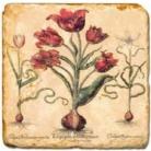 Carrelage en marbre, motif fleurs rouges C, finition antique, illet pour l'accroche, pieds antidérapants, L 20 xl 20 x h 1 cm