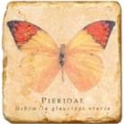 Marmorfliese, Motiv:Schmetterlinge A,  Antikfinish,  Aufhängeöse, Antirutschfüßchen, Maße: L 20 x B 20 x H 1 cm