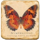 Marmorfliese, Motiv: Schmetterlinge B, Antikfinish,  Aufhängeöse, Antirutschfüßchen, Maße: L 20 x B 20 x H 1 cm