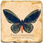 Marmorfliese, Motiv: Schmetterlinge C,  Antikfinish,  Aufhängeöse, Antirutschfüßchen, Maße: L 20 x B 20 x H 1 cm