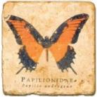 Marmorfliese, Motiv: Schmetterlinge D,  Antikfinish,  Aufhängeöse, Antirutschfüßchen, Maße: L 20 x B 20 x H 1 cm
