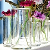 Collection DutZ ®  vase Cylinder, h 12 x Ø 15 cm, transparent