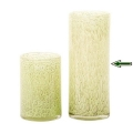 DutZ®-Collection Vase Cylinder, H 30 x Ø 12 cm, Hellgrün mit Bubbles