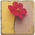 Carrelage en marbre, motif fleur A, finition antique, illet pour l'accroche, pieds antidérapants, L 20 xl 20 x h 1 cm