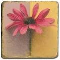 Carrelage en marbre, motif fleur C, finition antique, illet pour l'accroche, pieds antidérapants, L 20 xl 20 x h 1 cm