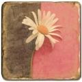 Carrelage en marbre, motif fleur D, finition antique, illet pour l'accroche, pieds antidérapants, L 20 xl 20 x h 1 cm