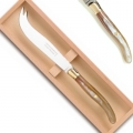 Laguiole cheese knife box, l 26 cm, polished brass bolsters, horn light