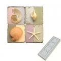 Memomagnete Set Muscheln 2, Marmor, Antikfinish, 4 er Set in Box, Maße: L 5 x B 5 x H 1 cm