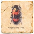 Marble Tile, Theme: Bugs D, antique finish, hanger, anti slip nubs, Dim.: l 20 x w 20 x h 1 cm