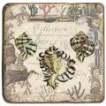 Marmorfliese, Motiv: Muscheln 1 D,  Antikfinish,  Aufhängeöse, Antirutschfüßchen., Maße: L 20 x B 20 x H 1 cm