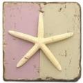 Marmorfliese, Motiv: Muscheln 2 C,  Antikfinish,  Aufhängeöse, Antirutschfüßchen., Maße: L 20 x B 20 x H 1 cm