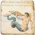 Marmorfliese, Motiv: Fabelwesen 1 A,  Antikfinish,  Aufhängeöse, Antirutschfüßchen, Maße: L 20 x B 20 x H 1 cm