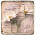 Marmorfliese, Motiv: Blütenbriefe 3 B,  Antikfinish,  Aufhängeöse, Antirutschfüßchen, Maße: L 20 x B 20 x H 1 cm