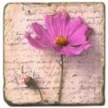 Marmorfliese, Motiv: Blütenbriefe 3 D,  Antikfinish,  Aufhängeöse, Antirutschfüßchen, Maße: L 20 x B 20 x H 1 cm
