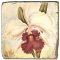Marmorfliese, Motiv: Tropenblüten B,  Antikfinish,  Aufhängeöse, Antirutschfüßchen, Maße: L 20 x B 20 x H 1 cm