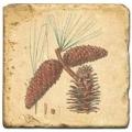 Marmorfliese, Motiv: Zapfen C,  Antikfinish,  Aufhängeöse, Antirutschfüßchen, Maße: L 20 x B 20 x H 1 cm