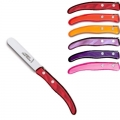 Laguiole Berlingot dessert knives Fuego, set of 6 in box, acrylic handles, colors: Pink, Lilac, Violet, Bordeaux, Red, Orange, Dimensions: l 18 cm