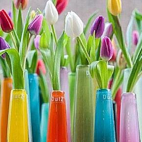 Collection DutZ ® vase Solifleur, conique, h 21 x Ø 6 cm, blanc